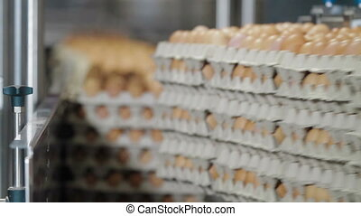 Transportation Eggs for automated sorting - Transportation...