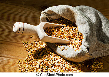 grains of oats. income for cereals in agriculture