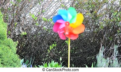 Colordul garden pinwheel - Decorative swirling colorful...