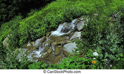 Mountain stream in Georgia - Smooth panorama stream high...