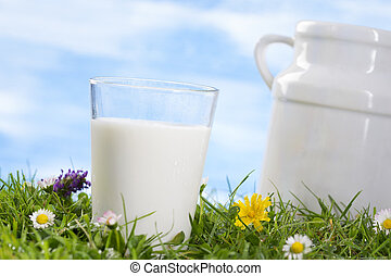 glass of milk and ug on the grass - Old style milk jug and...
