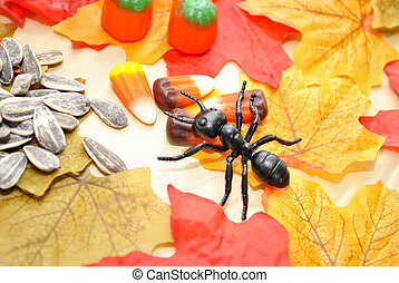 Autumn Treats and Toy Ant