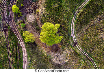 Aerial view of the field with roads and wood. - Spring lush...