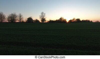 sunset field grass video meadow landscape evening