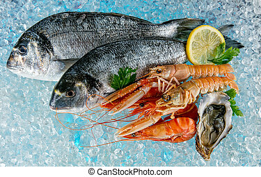 Seafood placed on ice drift - Various kind of fresh seafood...