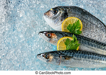 Fish placed on ice drift - Various kind of fresh fish placed...