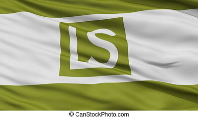 Closeup Waving National Flag of Lee's Summit City, Missouri...