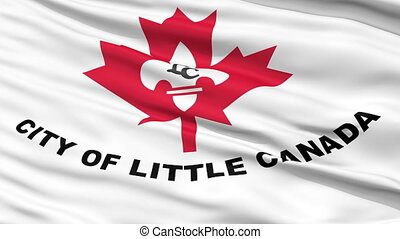 Closeup Waving National Flag of Little Canada City, Minnesota