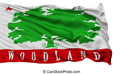Isolated Waving National Flag of Woodland City, California -...