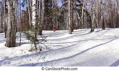 children sledding down a snowy hill - Cheerful children...