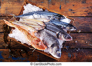 Variety of fresh marine fish on ice in a crate