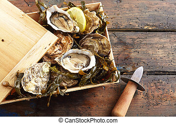 Wooden box of fresh oysters with a shucking knife - Wooden...