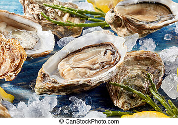 Fresh chilled raw oyster on crushed ice - Fresh opened...