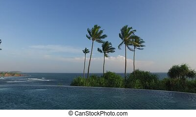 view from infinity edge pool to ocean and palms - travel,...