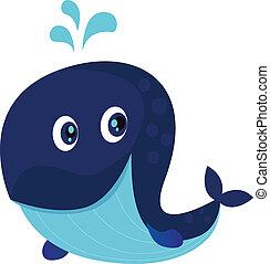 groot, blauwe, oceaan, spotprent, walvis