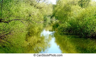 calm river in summer - Sunny day on a calm river in summer