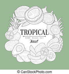 Tropical Fruits Vintage Sketch - Tropical Fruits Vintage...