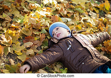 Portrait of a cheerful little boy wallow in fall foliage...
