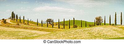 pola,  Tuscany