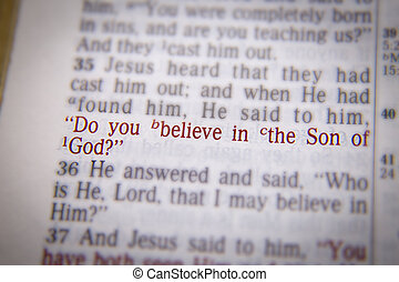 Bible text Do you believe in the Son of God? - Do you...