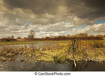 Beautiful photo of spring flood waters of the river -...