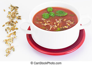 Tomato Soup with Germinated Grain in Plate. National Italian...