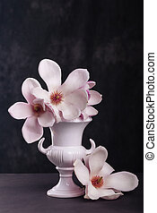 Still life with blooming magnolia on dark background