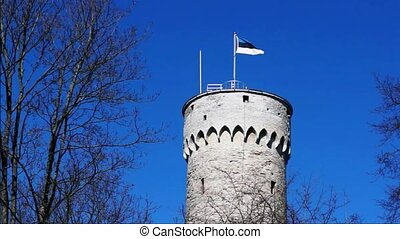 Flag of Estonia waving on big tower - Flag of Estonia waving...
