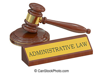 Wooden gavel Administrative law concept. 3D rendering -...