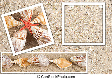 Beautiful background in the form of sand and shells in...