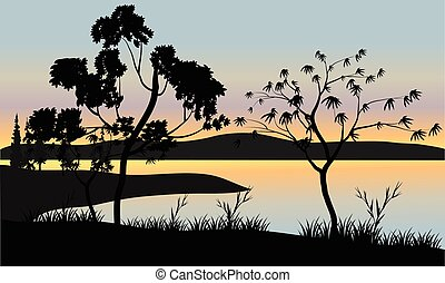 Tree at sunset scenery