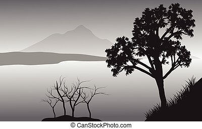 Silhouette of tree in lake