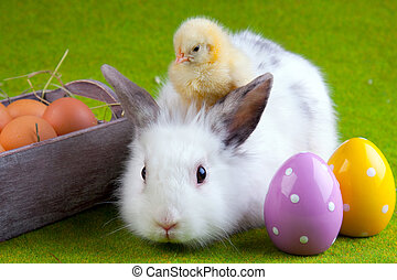 Wielkanoc, Pojęcie