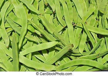 Mangetout pea vegetables - Mangetout (meaning Eat All) aka...