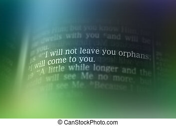 Bible text - I WILL NOT LEAVE YOU ORPHANS - I will not leave...