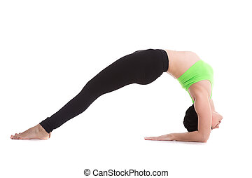 Two-Legged Inverted Staff yoga Pose - Beautiful sporty yogi...
