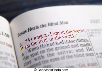 Bible text -  light of the world