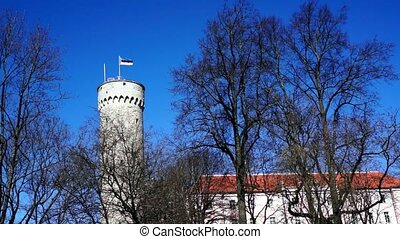 Estonian flag on historical tower