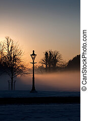 A lamp in the misty Phoenix park