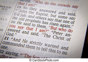 """But who do you say that I am - He said to them, """"But who..."""