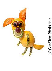 divertido, perro, hecho, de, naranja, y, kiwi, en, aislado,...