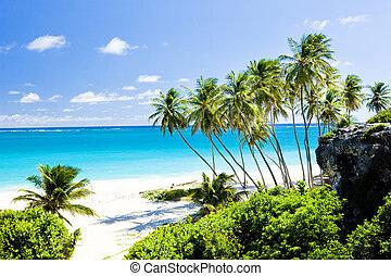 Barbados  - Bottom Bay, Barbados, Caribbean