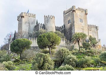 castelo, Almodovar, del, Rio, em, Cordoba, Espanha,