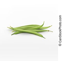vector bunch of green beans isolated on white background
