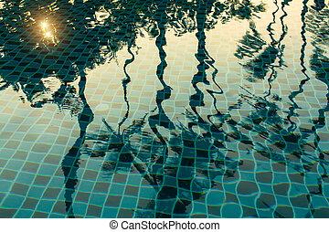 reflexión, de, Palma, trees, ,