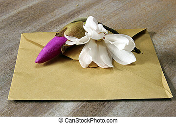 Envelop - A brown envelop with Magnolia blossom flowers on a...