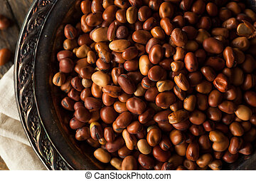 Raw Dry Organic Fava Beans in a Bowl