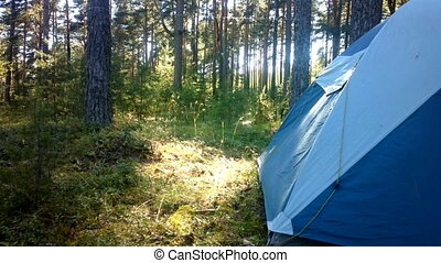camping outdoor with tent in woods in summer - camping with...
