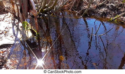 Spring creeks in April - The water spring was represented by...
