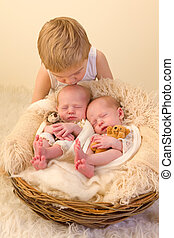 Toddler kissing newborn twin sisters - Toddler boy posing...